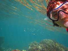 Surin Island tours with snorkeler in clear water is good.