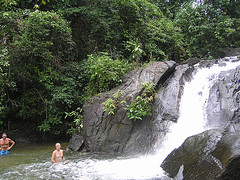 Phuket Jungle Lovers Package Tour