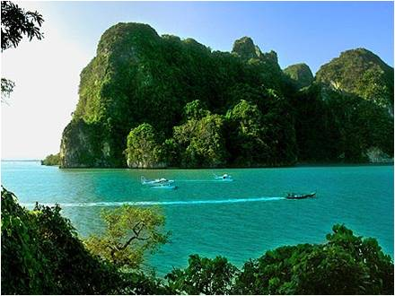 Picture of longtail boat and trees during Phang Nga Bay speedboat tours