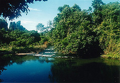 Phuket Jungle Lovers Packages