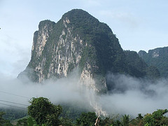 Jungle Khao Sok tour