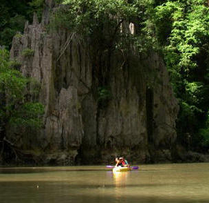 Phuket Canoeing day tour to mangrove forest and paddle tour