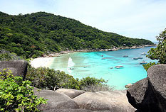 Similan Island Speedboat Day Tours Trips with tropical fishes around