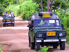 Safari Tour & Eco Adventure Trips