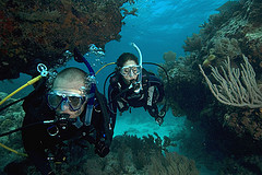 Phuket Scuba Diving Liveaboard with coral reefs and beautiful seafans