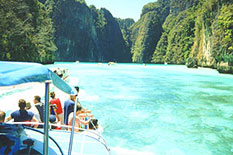 Private charter Phi Phi Island with clear water and fishes